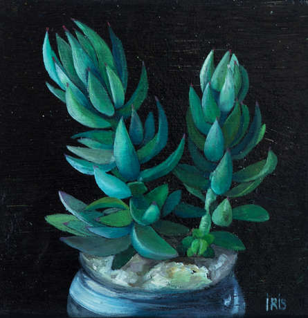 Svetlana Iris. Succulents. Trilogy. - photo 3