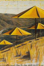Unwrapped, Part I: The Hidden World of Christo and Jeanne-Claude