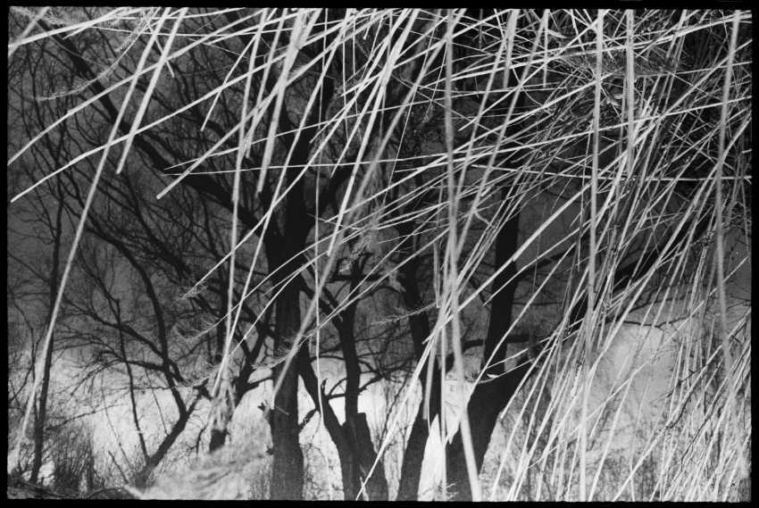 pavel smertin. photo - photo 1