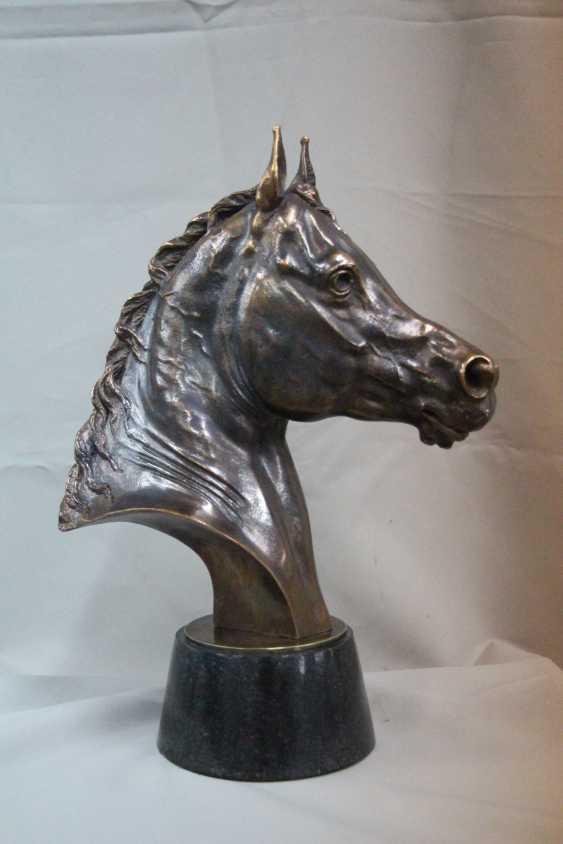 Umurzak Shanov. Head of Arab horse - photo 1