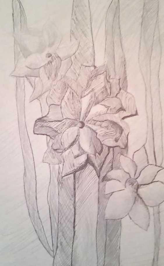 Olga Grin. Gladiolus - photo 1