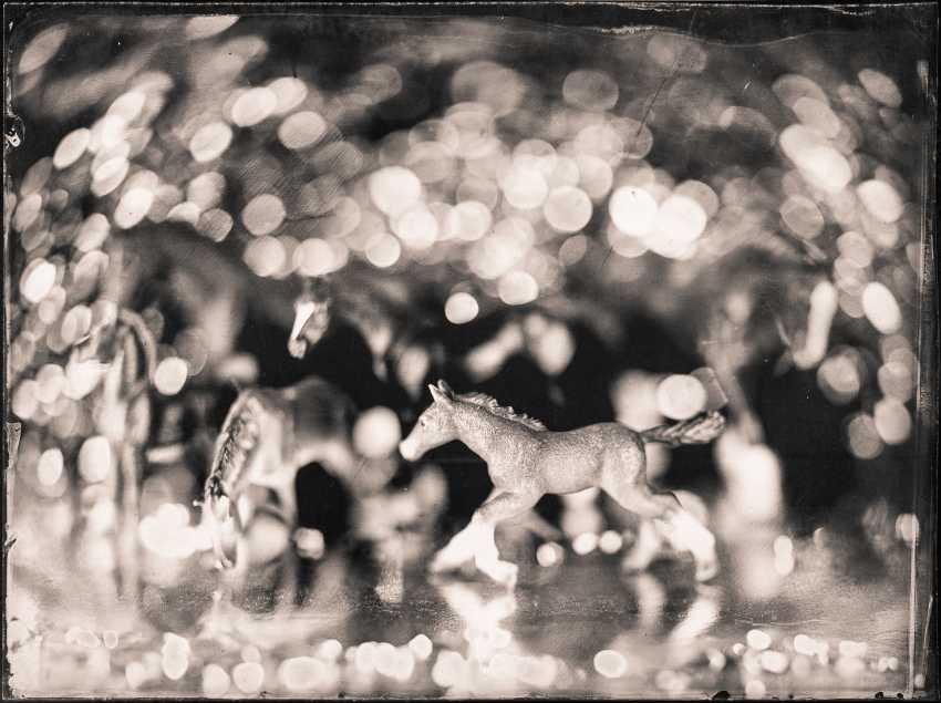 Evgeney Savin. Horses in apples - photo 1