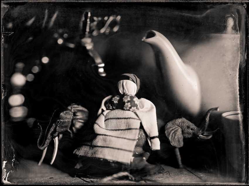 Evgeney Savin. elephants Avedon - photo 1