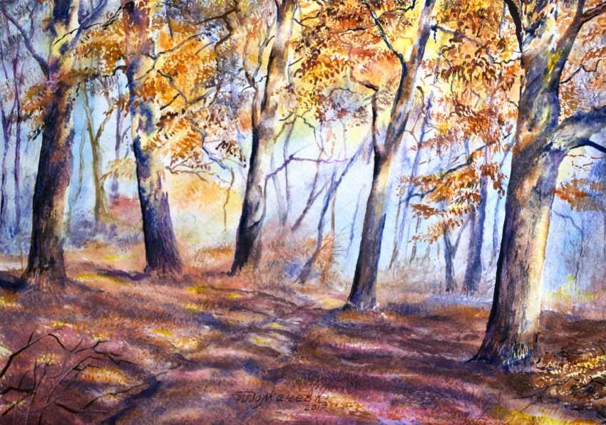 Konstantin Tolkachev. In the woods - photo 1
