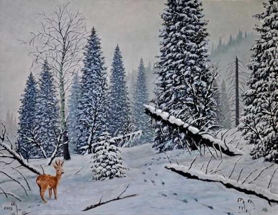 Alexandr Babkin. Winter in the TRANS-ili Alatau - photo 1