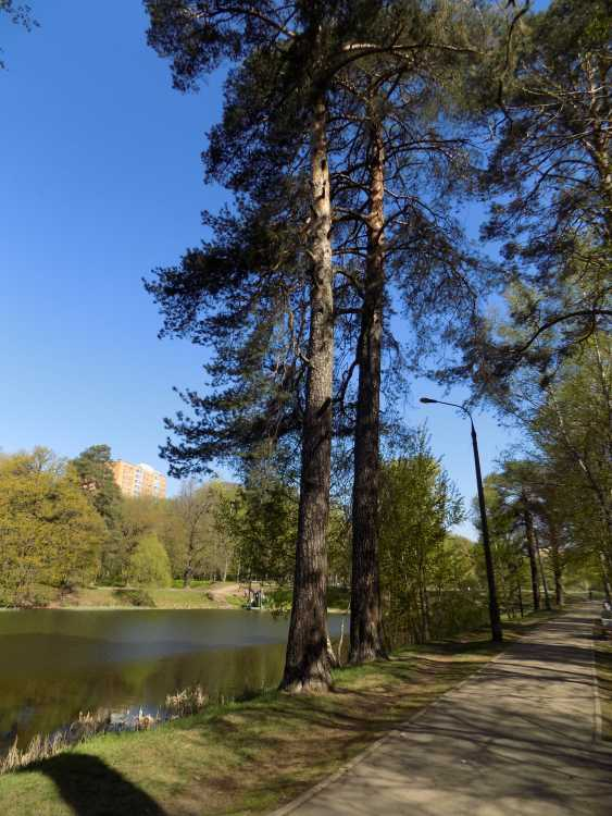 Leonid Sorokin. landscape photographs - photo 3