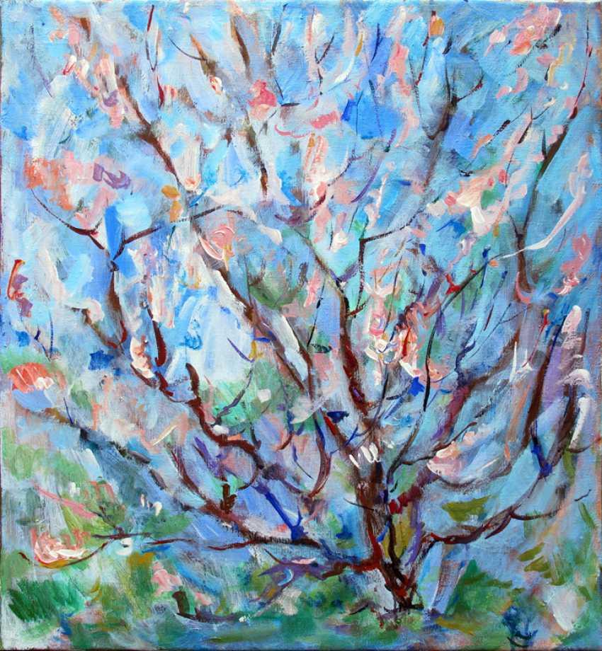 Nikolay Arzhanov. Apricot blossoms - photo 1
