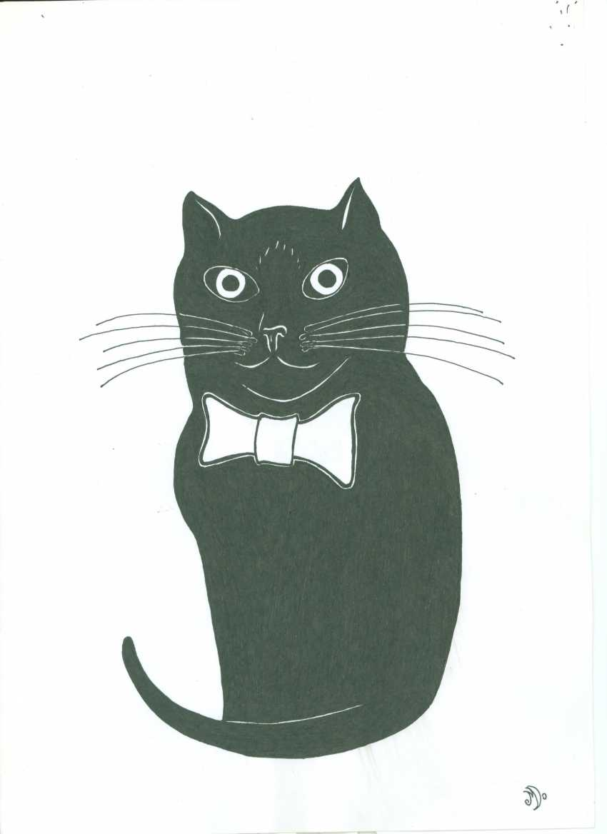 David Miresashvili. Cat Noir - photo 1