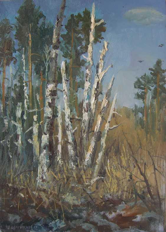 Gennadyi Sharoikin. Birch - photo 1