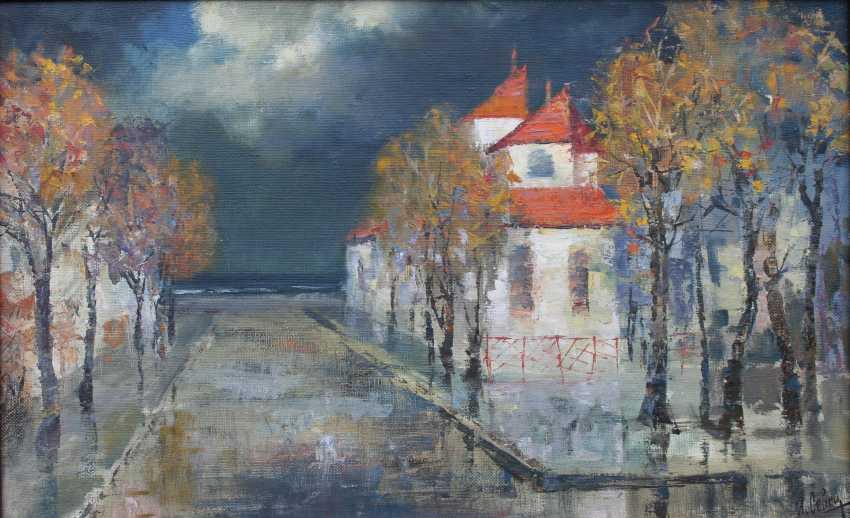 Igor Sevets. Roof and rain - photo 1
