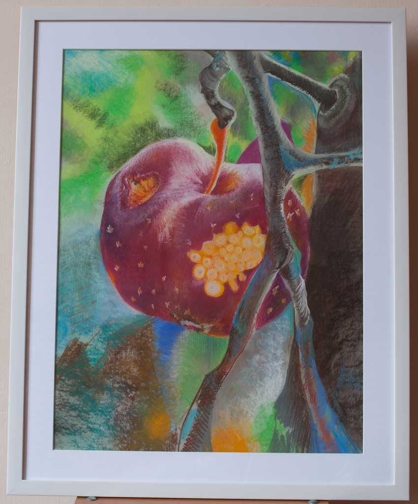 Tserkovna Oksana. The Apple of Discord, from the garden of the Hesperides - photo 1