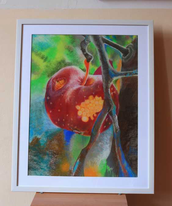 Tserkovna Oksana. The Apple of Discord, from the garden of the Hesperides - photo 2