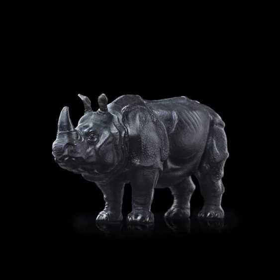Igor Kabirov. Rhino - photo 1