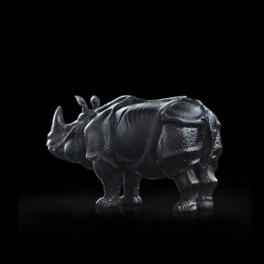 Igor Kabirov. Rhino - photo 2