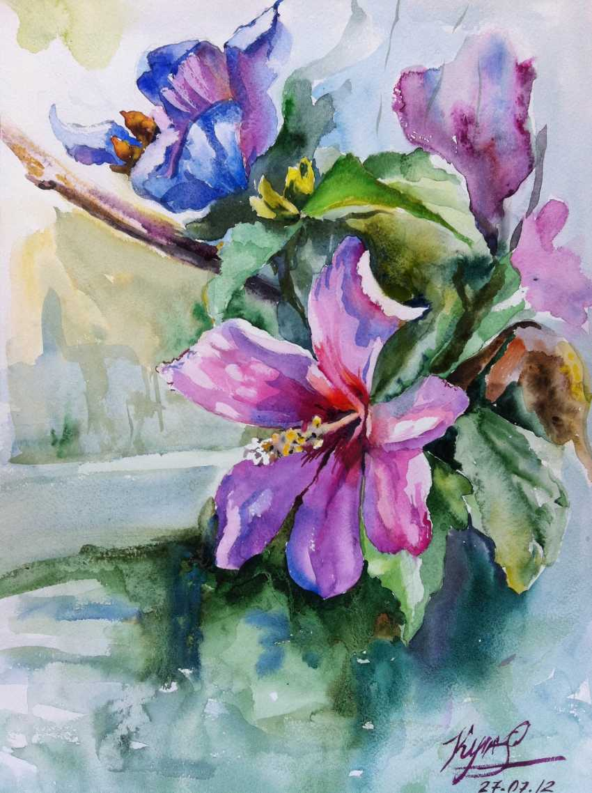 Nataliia Kulikovska. Garden hibiscus - photo 1