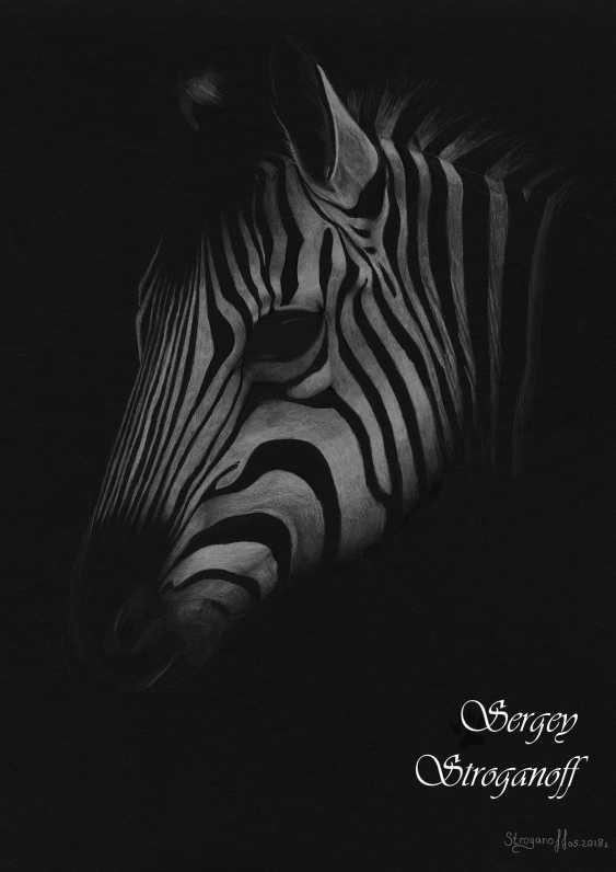 Sergey Stroganoff. White with black - photo 1