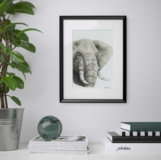 Sergey Stroganoff. African elephant - photo 2