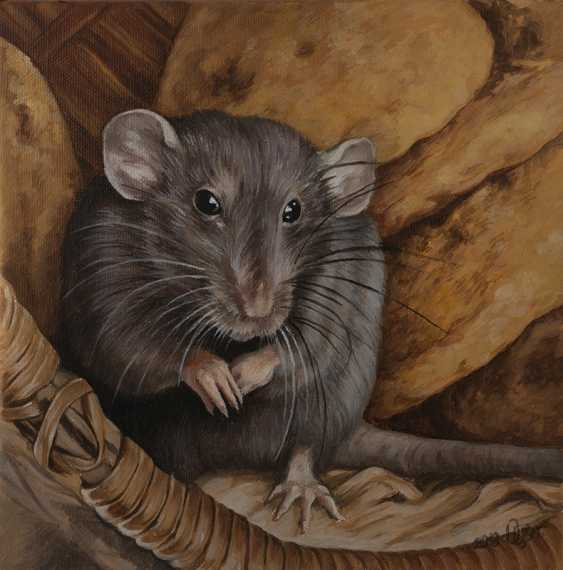 Olga Tsvetkova. Cute grey rat - photo 1