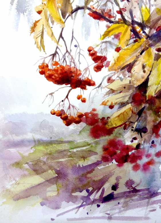 Aleksey Tochin. Rowan. Sketch watercolor - photo 1