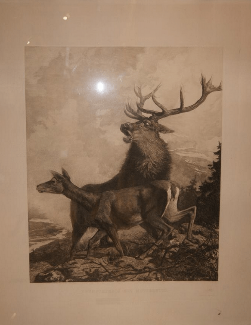 "Engraving of ""Hunting Deer"", XIX century, Germany, Berlin - photo 1"