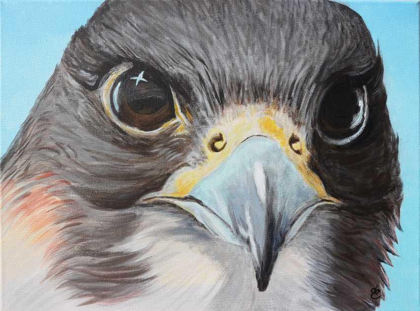 DMYTRO YEROMENKO. The Falcon's Look - photo 1