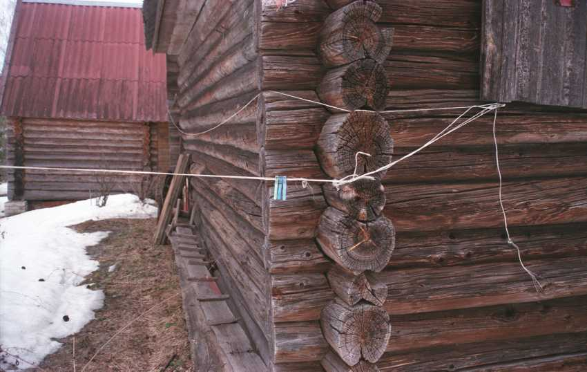 Alexey Semerikov. Clothespins - photo 1