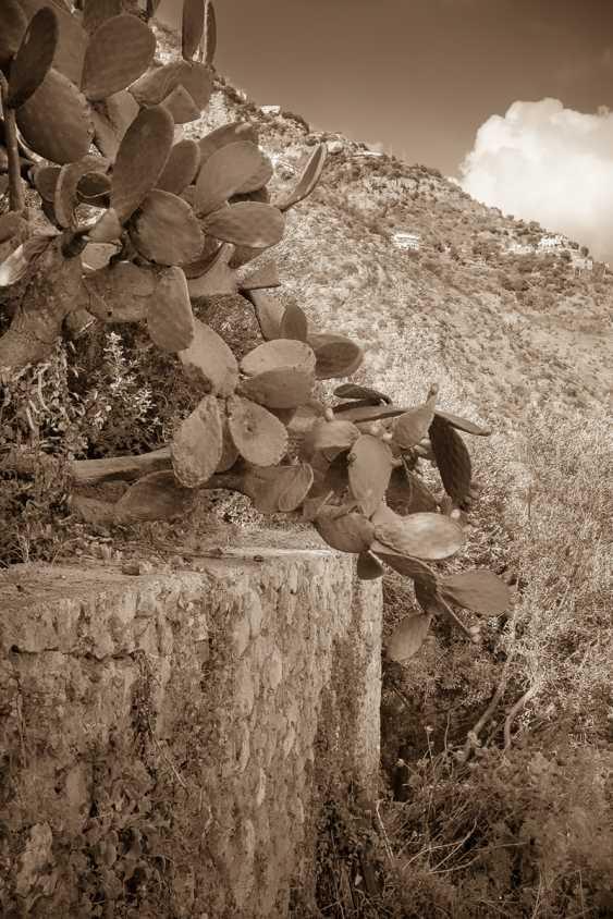"Yauhen Zaluzhny. from the series ""Neapolitan album"" - photo 1"