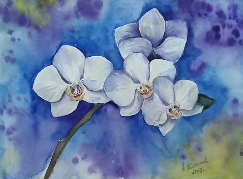 "Anastasia Beytuzun. The Watercolor "" Orchids "" - photo 1"