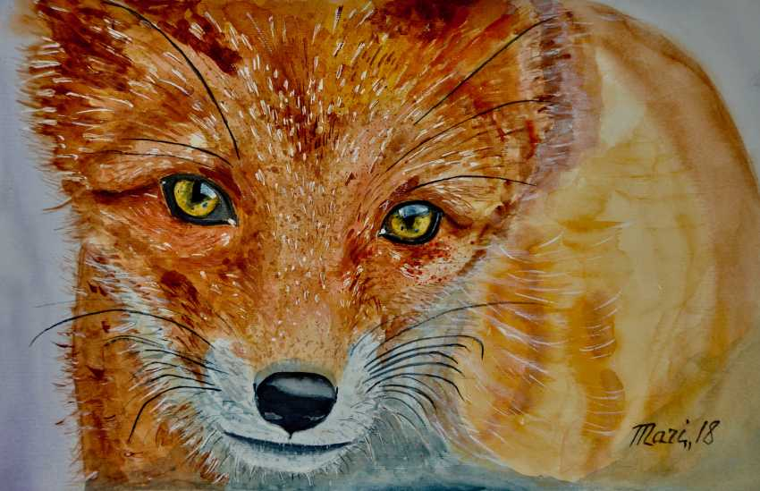 Maryna Pashchenko. Red Fox. - photo 1