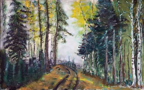 Yauhen Zaluzhny. road in the forest - photo 1