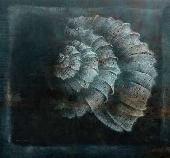 Shell - photo 1