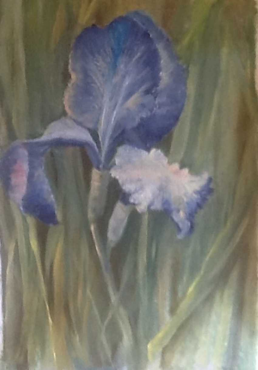 Galina Timofeevskaya. Blue Iris - photo 1