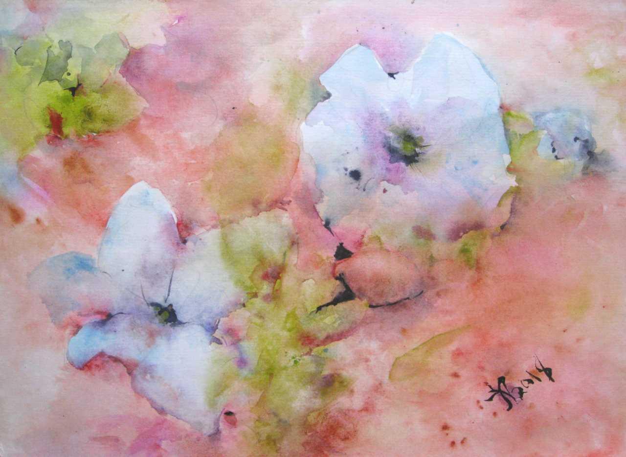 Image De Parterre De Fleurs anna lomachenko. blanc petun'i. un parterre de fleurs
