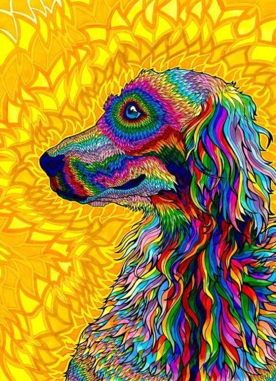 "Tatyana Kopulova. ""Rainbow dog"" - photo 1"