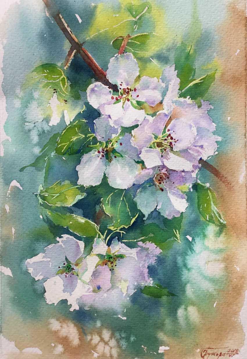 Olga Gnutova. Цветущая яблоня - photo 1
