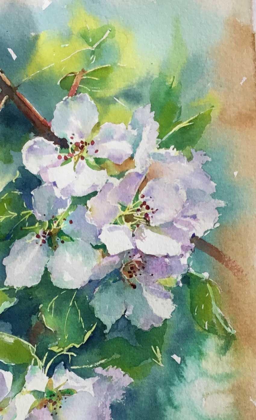 Olga Gnutova. Цветущая яблоня - photo 2