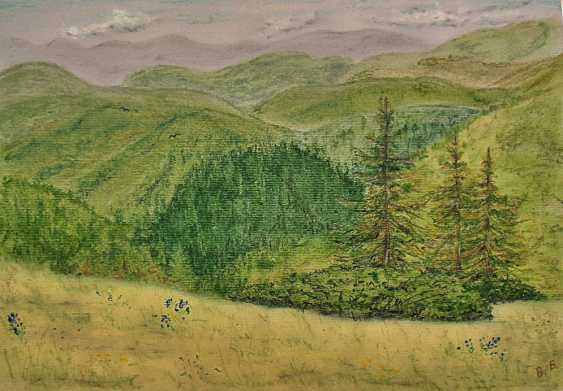 Victoria Buchina. Les carpates.Midi sous Говерлой. Carpathians - photo 1
