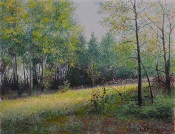 Ivan Ormanzhi. Original Landschaftsmalerei, öl auf Leinwand, sonnigen Tag - Foto 1
