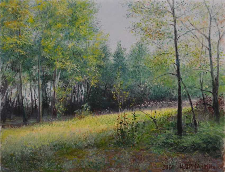Ivan Ormanzhi. Original landscape painting oil on canvas, Sunny day - photo 1