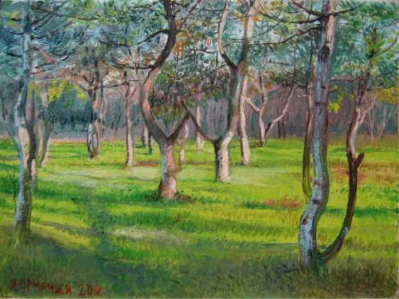 Ivan Ormanzhi. Original Landschaftsmalerei, öl auf Leinwand, Morgen in einem Kiefernwald Anpflanzen. - Foto 1