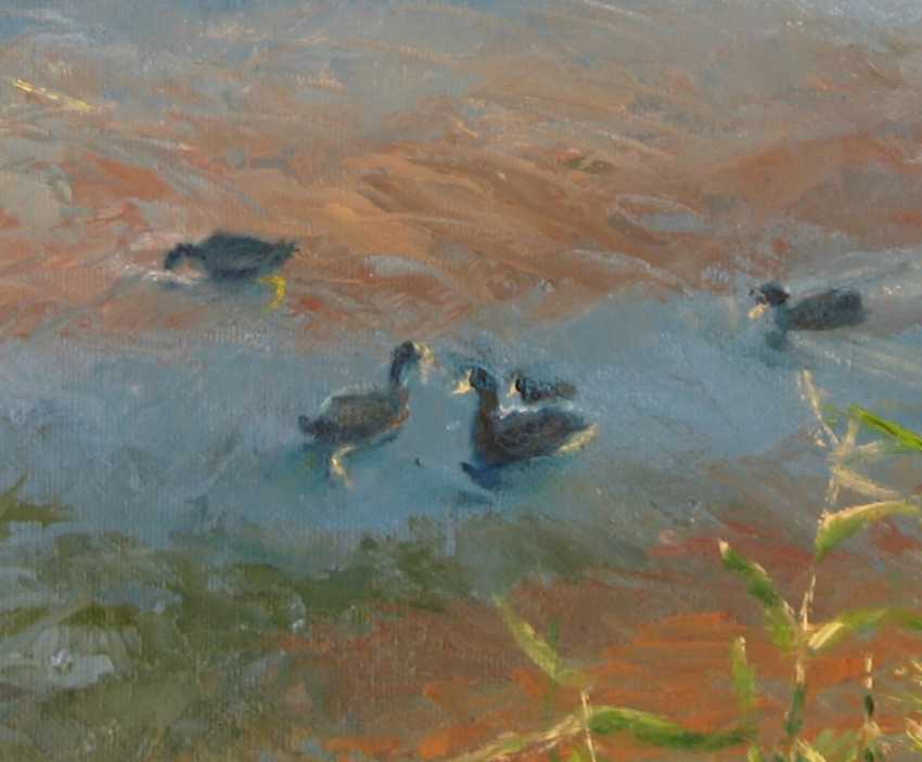 Ivan Ormanzhi. Original landscape painting oil on canvas, Ducks On The Lake - photo 3