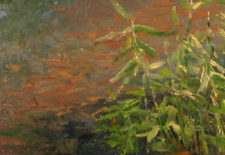 Ivan Ormanzhi. Original landscape painting oil on canvas, Ducks On The Lake - photo 4