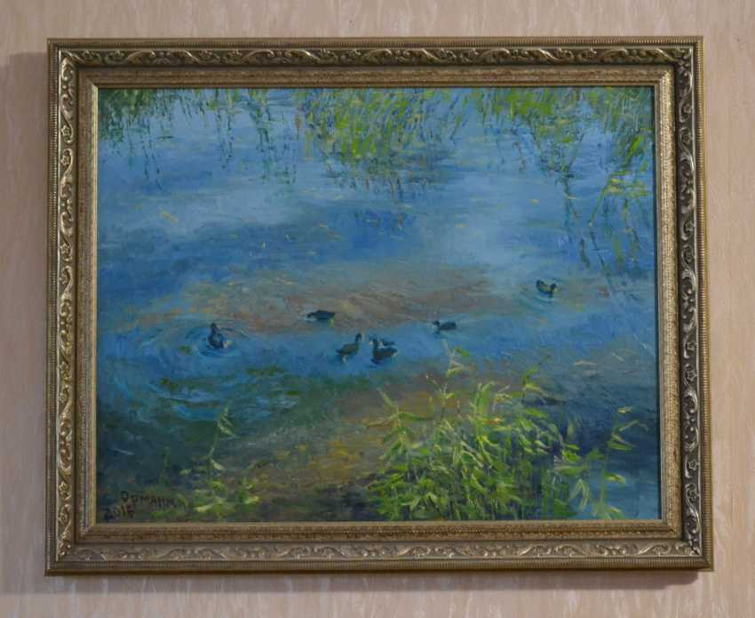 Ivan Ormanzhi. Original landscape painting oil on canvas, Ducks On The Lake - photo 5