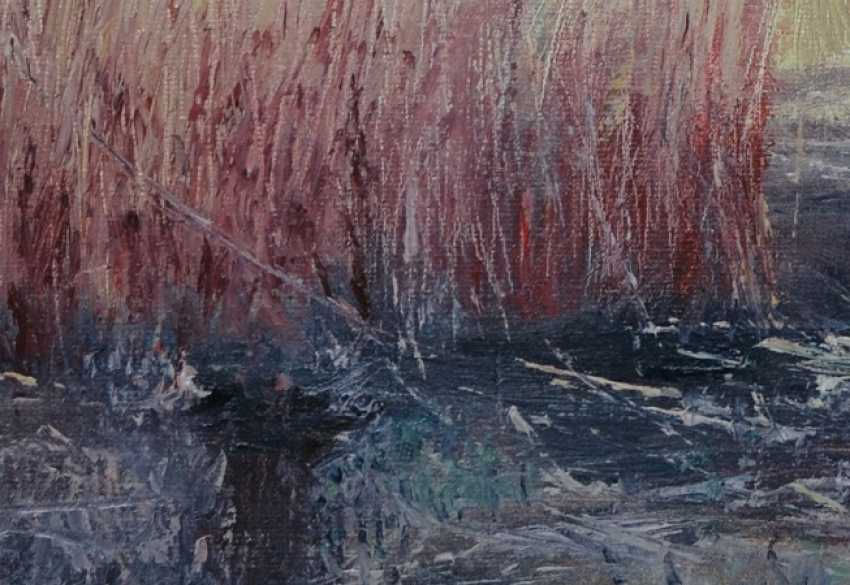 Ivan Ormanzhi. Original landscape painting oil on canvas, Reed after fire - photo 2