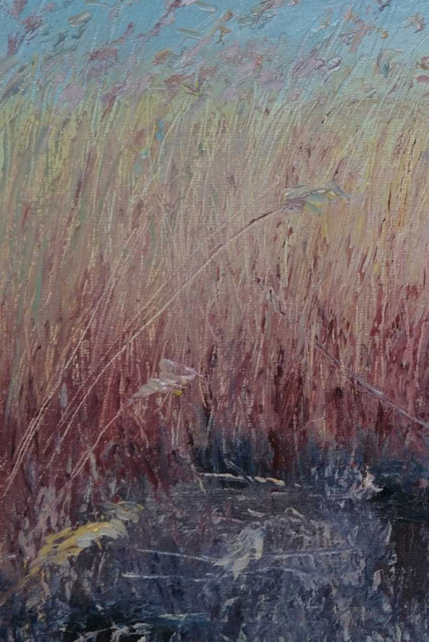 Ivan Ormanzhi. Original landscape painting oil on canvas, Reed after fire - photo 3