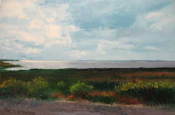 Ivan Ormanzhi. Original landscape painting oil on canvas, Azov Sea, Fedotova Foreland - photo 1