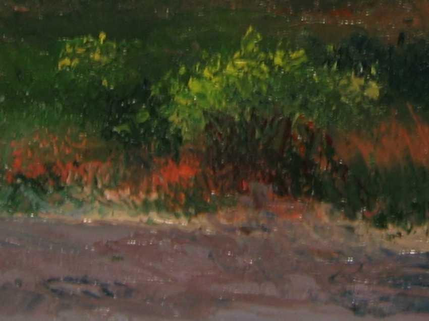Ivan Ormanzhi. Original landscape painting oil on canvas, Azov Sea, Fedotova Foreland - photo 2