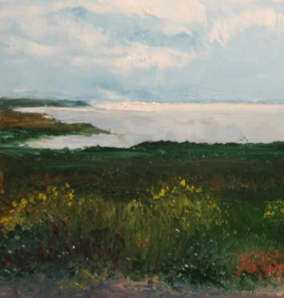 Ivan Ormanzhi. Original landscape painting oil on canvas, Azov Sea, Fedotova Foreland - photo 3