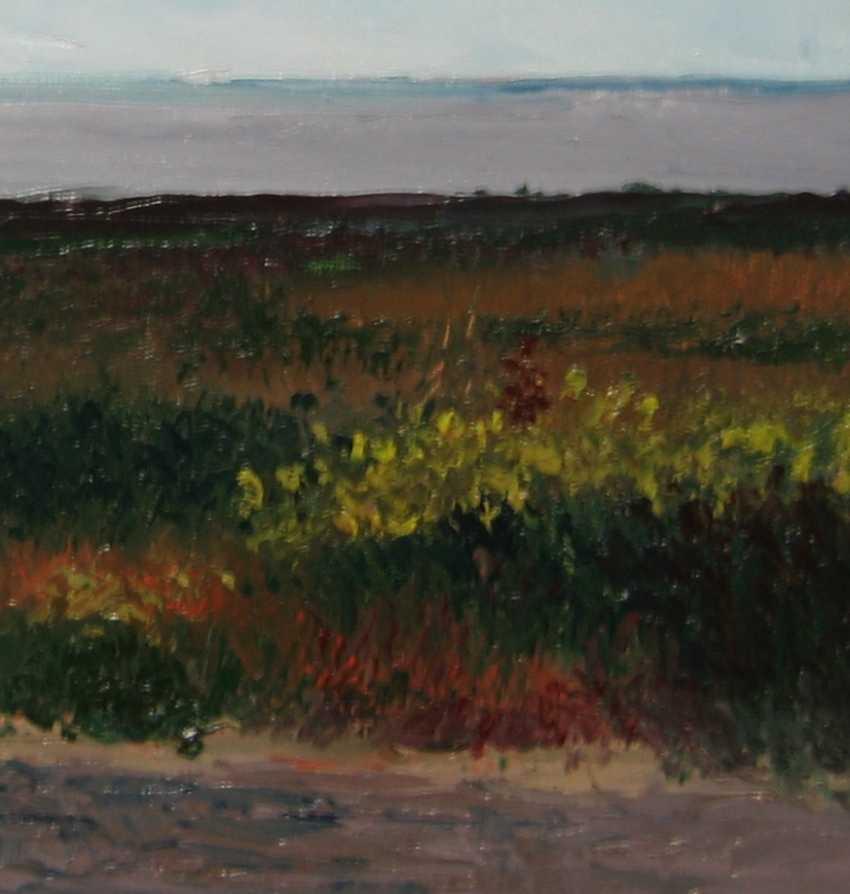Ivan Ormanzhi. Original landscape painting oil on canvas, Azov Sea, Fedotova Foreland - photo 4