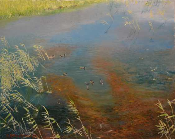 Ivan Ormanzhi. Original landscape painting oil on canvas, Ducks on the lake - photo 1